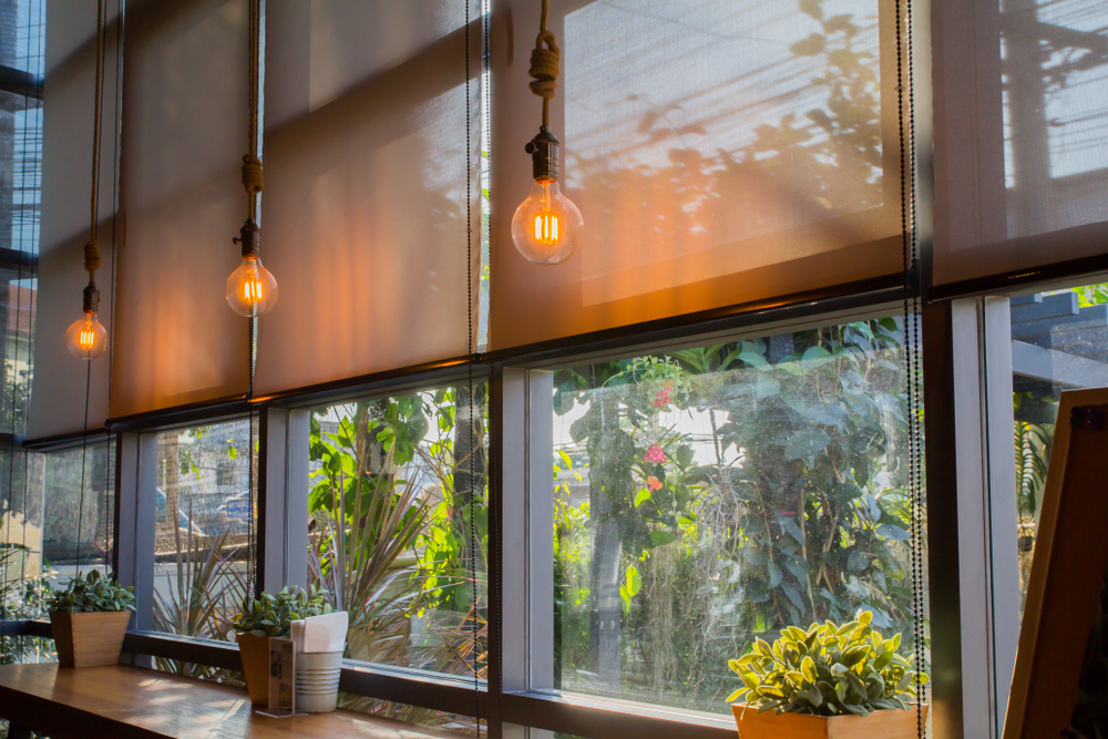 Natural, eco-friendly blinds in a cafe, next to plotted plants and modern light bulb fixtures